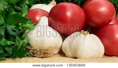 tomatoes, fennel, garlic and parsley lie on a tray on light brown paper, white, fresh, green leaves,