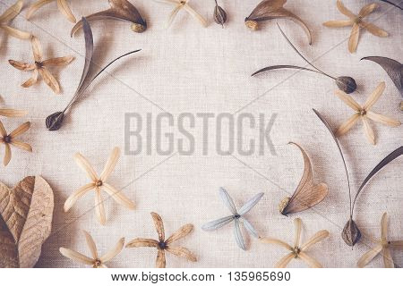 Autumn flowers seeds copy space toning background