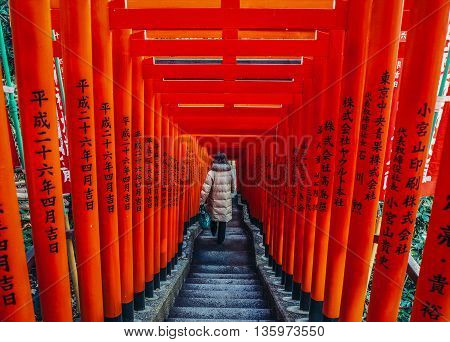 Tokyo Japan - February 27 2015: Woman walks down the stairs among wooden pillars of so called Torii path in Shinto Hie Shrine