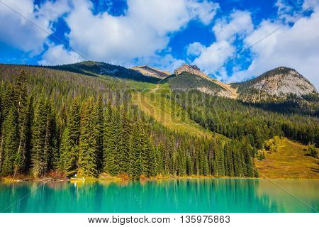 Coniferous forest on the shore of mountain lake. Emerald Lake, Yoho National Park, Canada