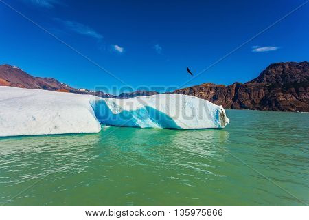 Huge white-blue ice floe drifts from coastal glacier. Argentina Patagonia, emerald water of the lake Viedma