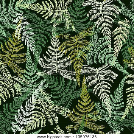 Vector Hand drawn Decorative pattern with fern ornament. Forest fern background