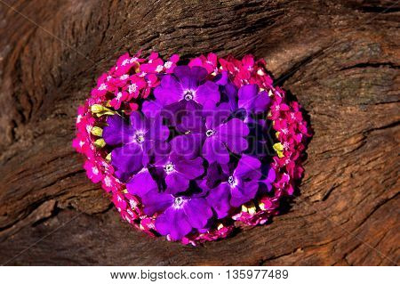 Sweet Small Blossoms In Pink And Lilac On Wood.