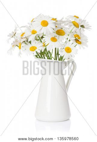 Daisy chamomile flowers bouquet in pitcher. Isolated on white background