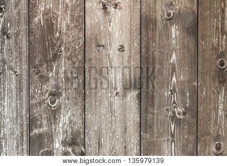 Horizontal wooden plank with knots pattern of natural aged color.