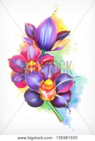Beautiful orchid, watercolor painting, mesh vector