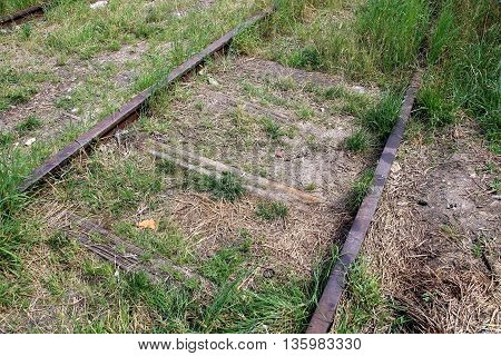 abandoned rusty rails overgrown with wild grass