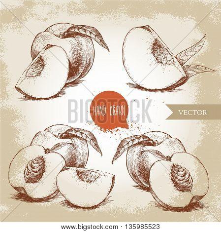 Hand drawn sketch style peach fruit set. Vintage eco food vector illustration. Ripe peach peach slices. Grunge background.