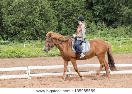 Girl Rides On Horse In A Field In A Day