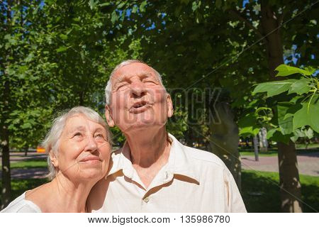 The happy old couple in the summer on a walk in park