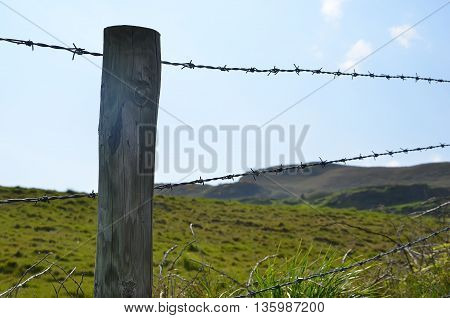 Wooden Stake With Barbed Wire Boundary Of Pasture