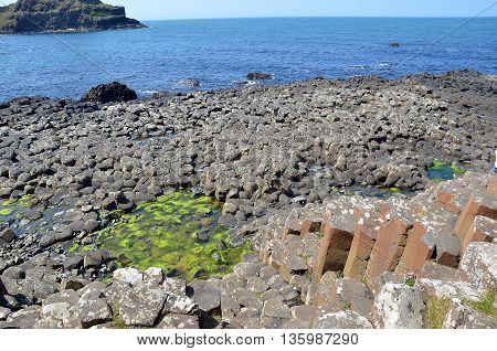 Part Of Giant Causeway Nature Landscape In Ireland