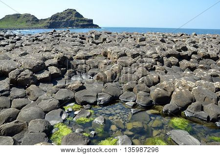 Giant Causeway View Landscape With Ocean And Cliffs In Ireland