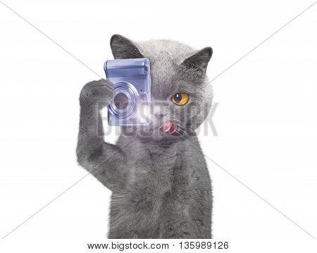 cat is going to take pictures of something -- isolated on white