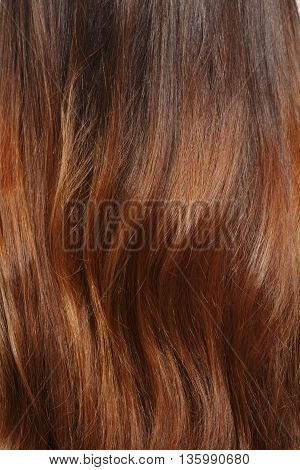 Long brown hair as background. Representation of woman's brownhair as background in studio. Hairdressing concept.