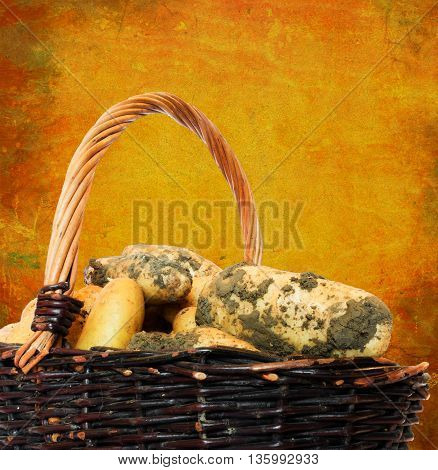dirty earth yellow potatoes in a wicker basket with vintage background