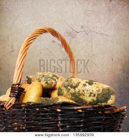 Dirty ground potatoes in a wicker basket