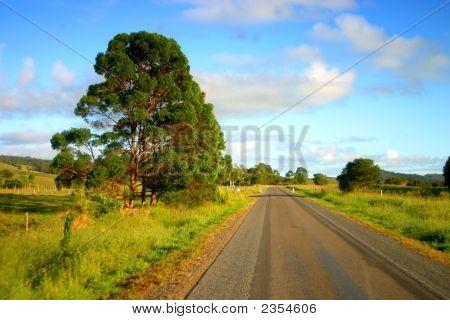 Noosa, Sunshine Coast, Australia..