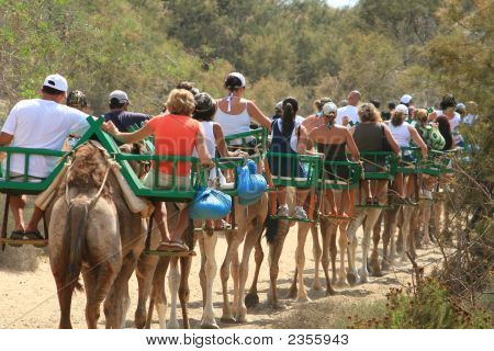 Touristic Caravan