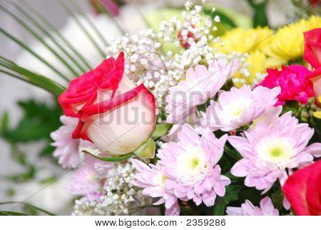 Bouquet Colour