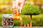 Womans Hand Open A Faucet Of Jar And Gold Coin Drop For Invest Benefit Growing And Tree Of Money Ba poster