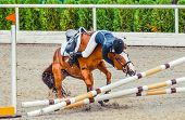 Young Rider Falling From Horse During A Competition. Horse Show Jumping Accident. Equestrian Sport B poster