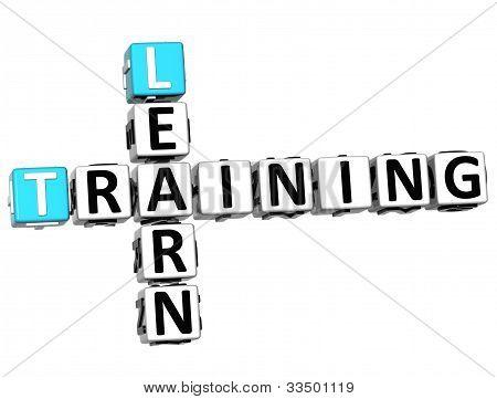 3D Learn Training Crossword