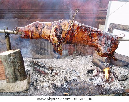 Grilled suckling pigs