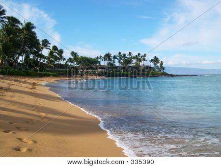 Napili Beach In Maui
