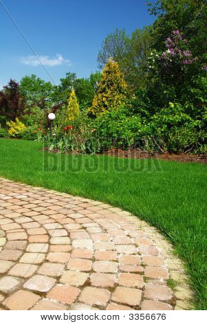 Beautiful Garden And Path