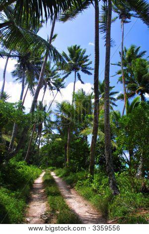Fijijeeproad