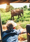 Little Tourist Boy Looking At Elephant Calf And Enjoying His Jeep Safari Activities At  National Nat poster