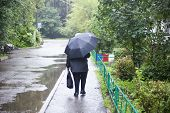 Umbrella In Inclement Weather Is Salvation For Man. A Woman Goes To Work In The Rain. The Road Near  poster