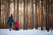 View From The Back Of The Baby And His Mother Walking In A Snowy Forest On A Sunny Frosty Winter Day poster