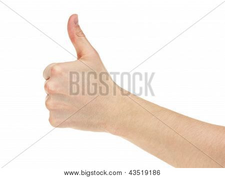 Adult Man Hand Thumb Up