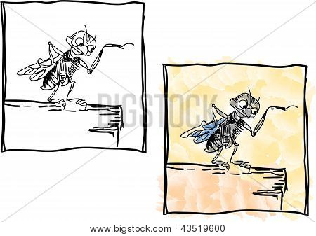 Fly On A Table