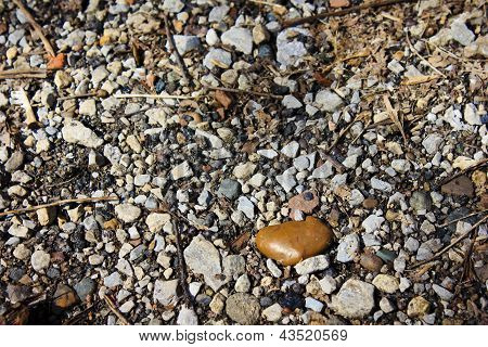 Pebbled Path