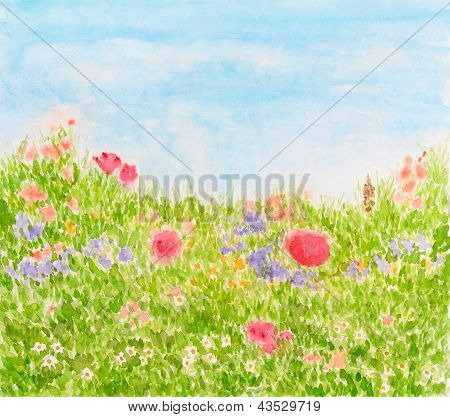 Summer Flowers On Daylight Meadow, Watercolor Hand Painted