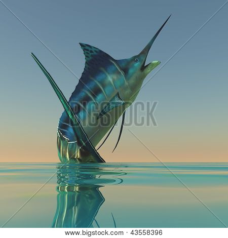 Marlin Sport Fish