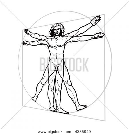 Leonardo's Vitruvian Man