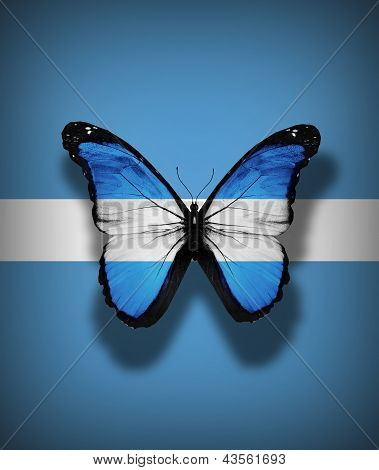 Argentinean Flag Butterfly, Isolated On Flag Background