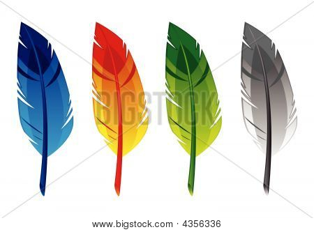 Blue, Red, Green And Gray Feather