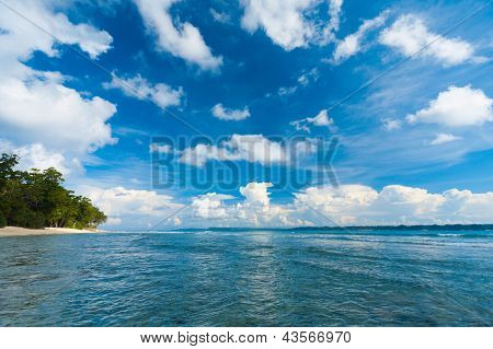 Neil Island Ocean Seascape Forest Beach Edge Wave