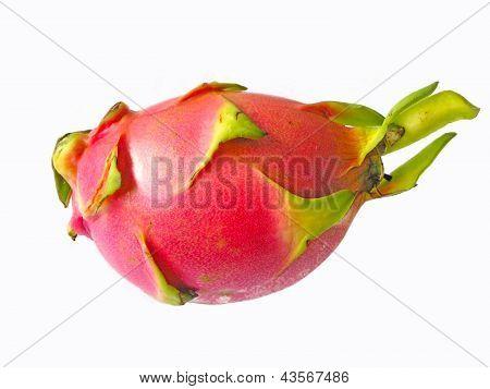 Fresh Pitaya Features