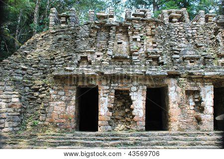 Ancient Mayan Ruins At Yaxchilan, Chiapas, Mexico