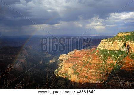 Rainbow And Rain Over The North Rim Of The Grand Canyon