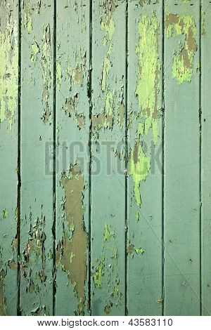 part of green weathered wooden fencing