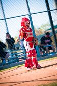 foto of little-league  - Little league baseball catcher standing up at home plate looking - JPG