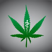 picture of maryjane  - cannabis marijuana on medical prescription illustration design - JPG