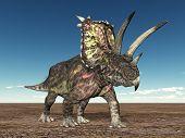 Постер, плакат: Динозавр Pentaceratops